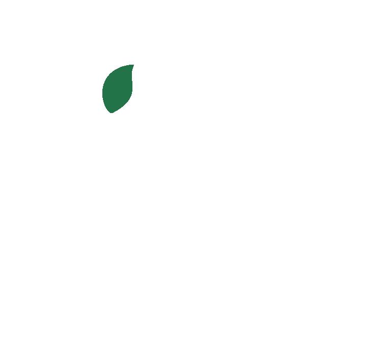 vegmeup, vegan, plant based, food box
